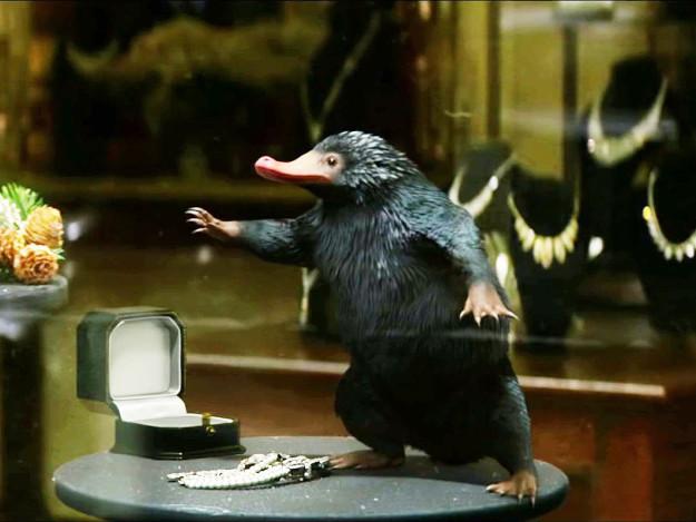 《怪獸與牠們的產地》「玻璃獸」驚爆真實存在!粉絲:「立馬訂機票!」