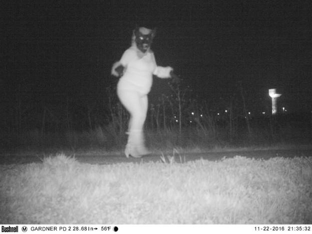 警察安裝了遠程攝像機在臭鼬身上 拍到的照片警察嚇到說「WTF」