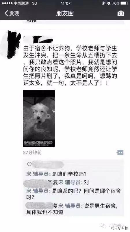 他收留乖巧流浪狗暫住在學校宿舍裡,老師「為他好」把狗從5樓扔下去摔死!