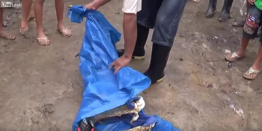 (非趣味) 11歲小男孩跌入「食人魚湖泊」,撈起來時只剩下頭還有肉了...(影片太過恐怖慎入)