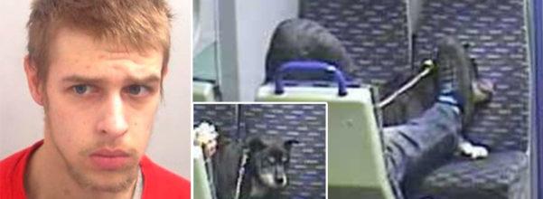 (非趣味) 22歲人渣火車上「虐待踹狗」長達20分鐘,「畫面曝光」被判刑但狗狗已經不幸...