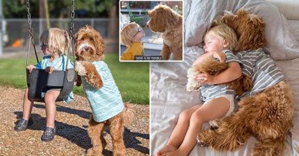 3歲男孩跟狗麻吉「感情超好」融化10萬粉絲,一起看夕陽那張萌翻全世界!(13張)