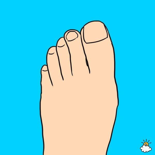 「8種不同腳趾形狀」決定不同個性,另一半腳長這樣你就完蛋了!