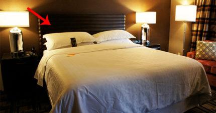 這就是為什麼「飯店床上都放4個枕頭」!難怪每次都睡得這麼不舒服!