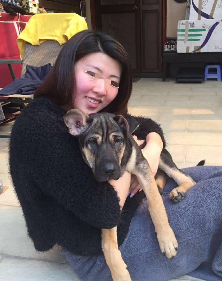 這家人領養4隻狗狗表示會照顧卻「全部送去安樂死」,一個月後再度領養新的狗狗...