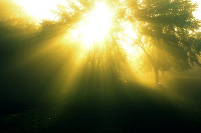 他在多年前曾「死去一小時」上天堂走了一遭,上帝有個「裝滿人類身體部位」的神祕房間。