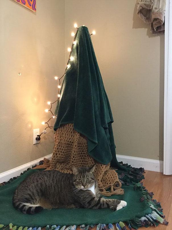 38張飼主為了不讓毛小孩搞破壞所想出的「最強聖誕樹防衛計畫」照片!