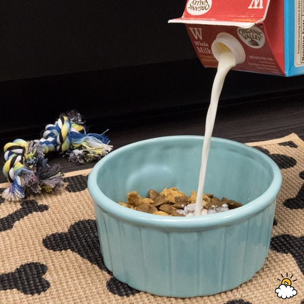 牛奶過期怎麼辦?9大「比沒過期還好用」神奇功用讓你再也捨不得倒掉!