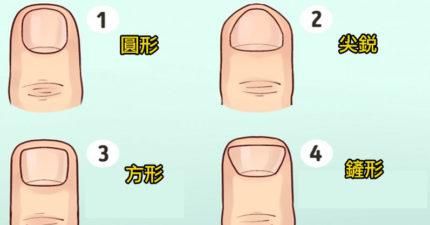人生秘密全透露!「指甲形狀」透露出你的真實人格 「鏟型指甲」的人出生就贏一半!