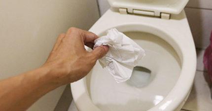 重大政策轉彎!環保署長下令「衛生紙丟馬桶!」,全世界只剩台灣中國還丟垃圾桶!
