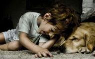 驚人研究:小孩有寵物的陪伴比跟兄弟姐妹在一起更快樂!寵物是最好的對話對象!