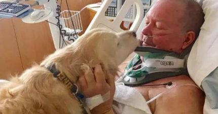 雪中跌斷脖子,愛犬冒死「 4度中守護20小時」趴在他身上救他一命!