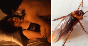 老婆發現「老公外遇後」不給他碰,老公只好用「蟑螂」來逼愛愛!