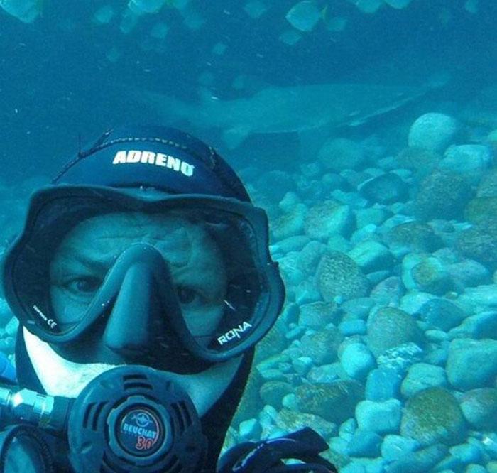 7年前跟15公分大小鯊魚玩,7年來小鯊長大一看到他都像「爸爸來了」一樣!