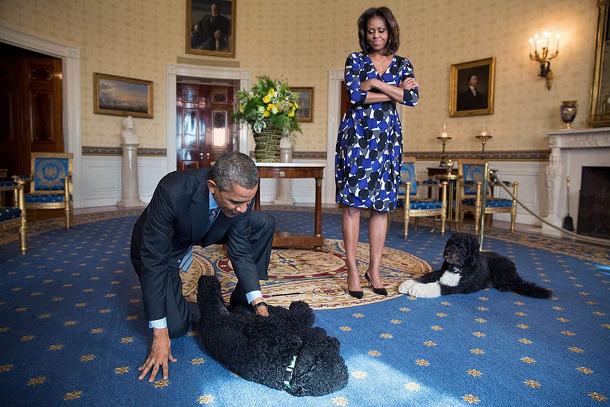 President Barack Obama And First Lady Michelle Obama, Joined By Family Pets Sunny And Bo, Wait To Greet Visitors In The Blue Room During A White House Tour, Nov. 5, 2013