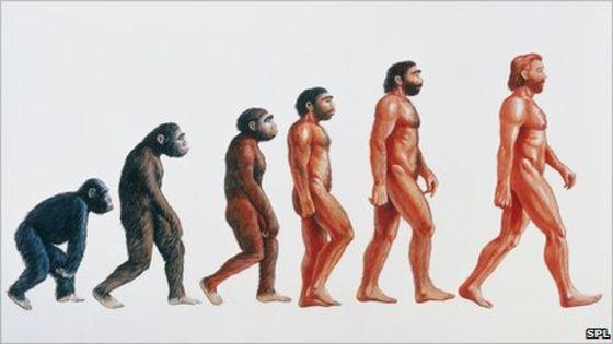 遺傳學研究發現「人類越來越蠢」,聰明的人都不想生了!
