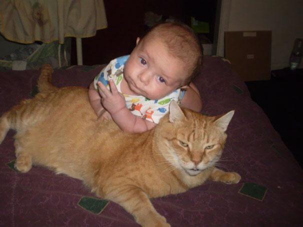 30個會顛覆你對小嬰兒可愛印象的「超壞胚Baby」!#15長大一定不簡單...