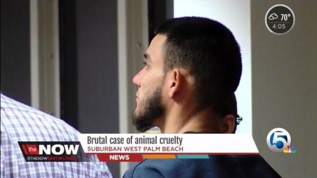 (非趣味) 28歲殘忍男為驅魔「用斧頭把狗狗活生生砍頭」慘死,他說:「他看了我一眼。」