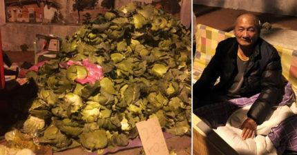 台南菜農阿伯賣不完「24小時不打烊」,累了就睡「高麗菜牆」千人手刀揪團!(附購買資訊)