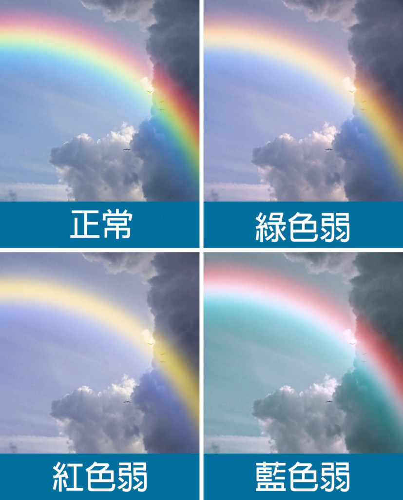 12張圖片讓大家看到「3種色盲的人」眼中看到的世界