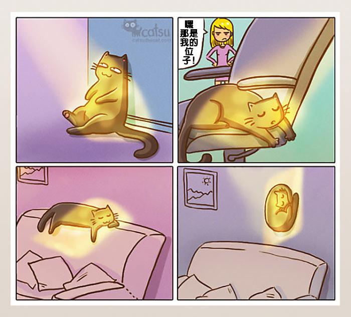 12則「證明貓奴能算是另一種人類」的中肯爆笑貓生漫畫。#4當跟另一半愛愛時...