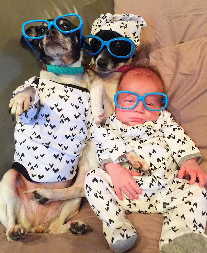 小寶寶抱回家發現毛寶貝們秒變「寶寶守護者」!#6幫寶寶取暖超揪心!
