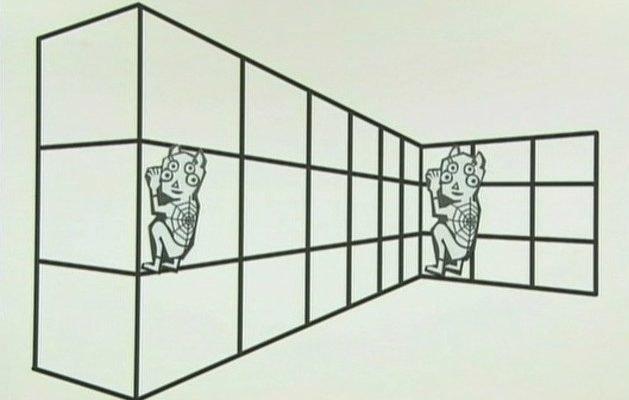 「2隻四眼蜘蛛怪」哪個比較大?人的大腦絕對不會讓你猜對!