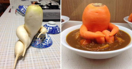 40張根本就不想要再做自己的爆笑「蔬菜水果偽裝」照片!