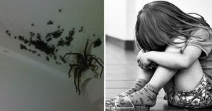 青少年將9歲女孩鎖進滿是蜘蛛的櫥櫃中「逼口愛」,法官「同意是性探索」輕判讓網友憤怒...(非趣味)