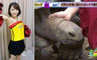 美女主播鏡頭前「摸一摸龜龜頭」瞬間變大硬了!網友驚呼:「手技太純熟!」