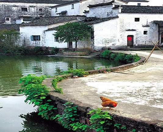 明朝國師劉伯溫設計的浙江「八卦村」完全依八卦布局,百年來發生「神奇現象」太不科學了!