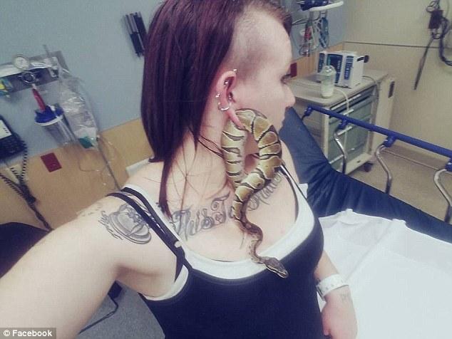 女子玩蛇玩到一半「見洞就鑽」,肥肥卡耳洞慘變「活蛇耳環」緊急求救!