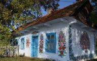 波蘭小鎮每間屋子都被紓壓又美麗的「花草塗鴉」填滿滿,為了要從二戰傷痛走出來!(30張)