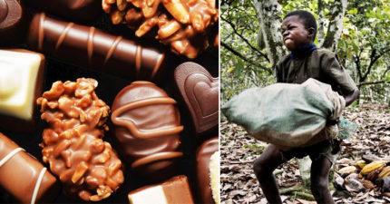 這7款「超熱賣國際名牌巧克力」,全是靠非洲童工被奴役的血汗「滴出來的...」