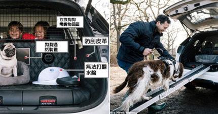 史上首輛專為毛孩設計的車!一打開後車廂「8種超強貼心設備」帶狗狗出門玩再也不是夢!(影片)