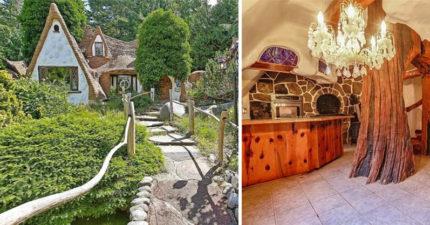 真實世界中的白雪公主「小矮人的家」比動畫更夢幻,「後院的小動物樂園」萌到想尖叫! (13張圖)
