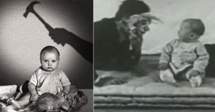 史上最沒人性「恐怖實驗」把1歲男童當實驗對象,「摸一下老鼠敲一次鐵棒」毀了他一生!