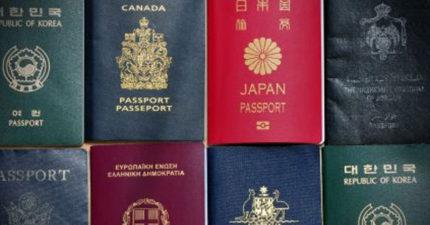 這就是為什麼全世界護照「只有四種色系」。台灣、南韓、北韓都是綠色的原因是一樣的!