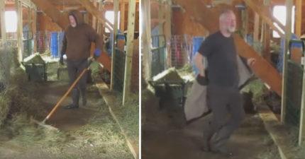 中年大叔正在打掃他的穀倉,當他一轉身衣服脫掉時全網愛死12萬讚「1000萬觀看次數」!