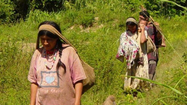 現代生活正在謀殺你!原始部落健康先進「80歲老人比我們50歲中年人健康」沒心臟病「4大養生關鍵」曝光!
