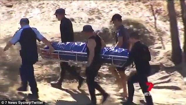 英雄狗想救快被溺死男孩「咬傷狠心母親」但被判死刑,5萬名網友出動拯救!