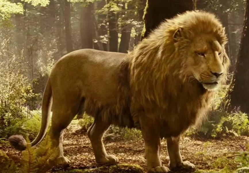 艾瑪華森公開自己「最怪性癖好」,《美女與野獸》裡的橋段是真的...