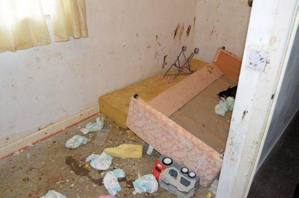 家中全都大便蒼蠅髒到4個小孩「都變成喪屍」!警察被臭到「差點殉職」!