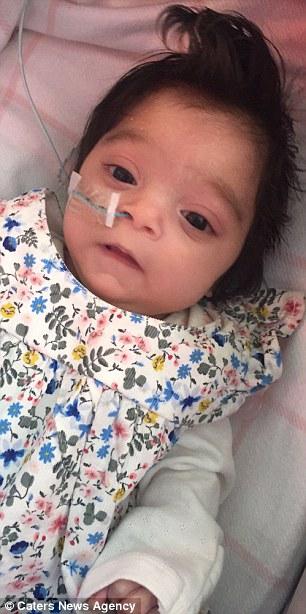 8個月女嬰「頭髮超級濃密+充滿光澤」路人以為是洋娃娃,「她沒戴假髮」看家庭照就知道了!(13張)