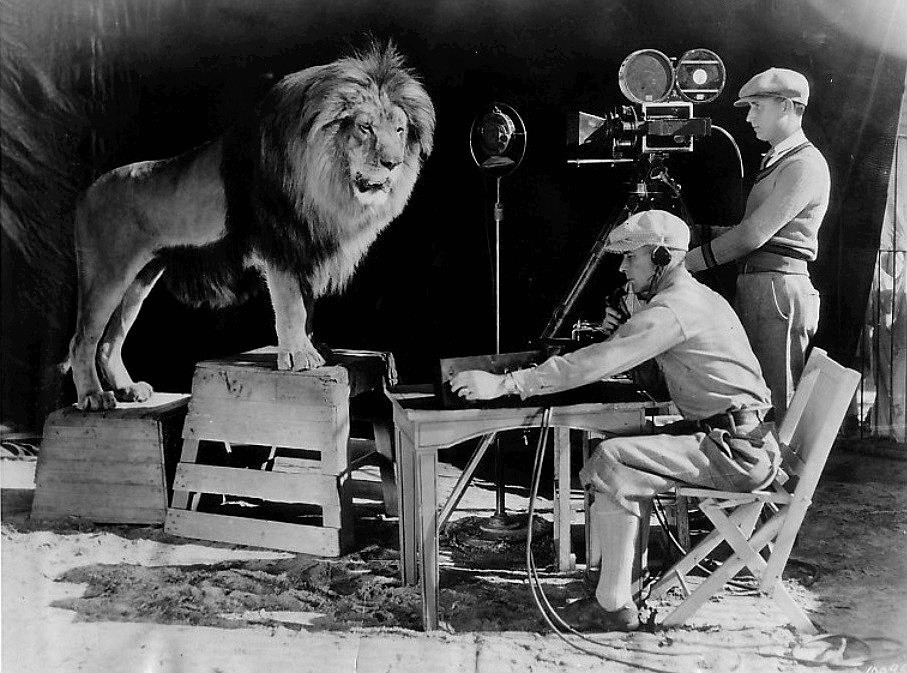 米高梅「商標中吼叫的獅子」拍攝時把馴獸師咬死?7隻獅子都有嫌疑!