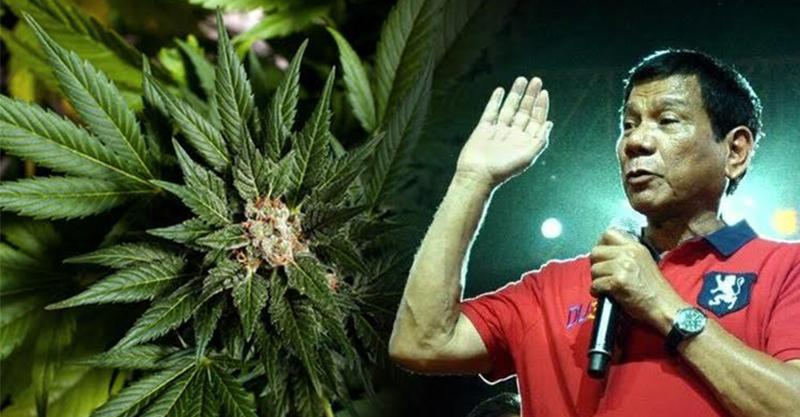 菲律賓總統杜特蒂暴力掃毒「半年屠殺6000人」血洗全國!現在宣布「大麻合法化」但先看清楚!