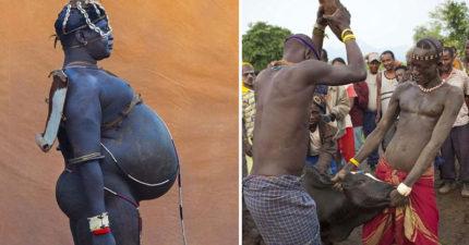 衣索比亞這部落超狂比賽「只喝牛奶+牛血」半年後看誰最胖,但其實都不會殺牛?! (11張圖+影片)