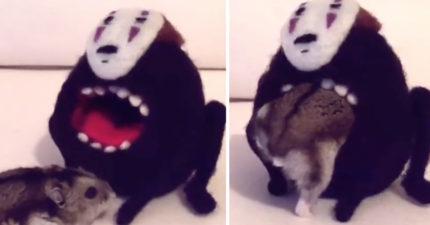 無臉男「吞掉小倉鼠」的影片,讓人尖叫「再一遍、再一遍!」