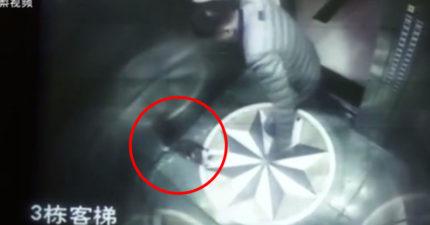男子在電梯裡「狂踹小狗」直到倒在「血池抽搐」,讓網友憤怒肉搜! (非趣味影片)