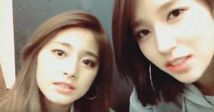 TWICE周子瑜跟Mina直播清唱「比CD好聽」,網友:「被擊倒了...」
